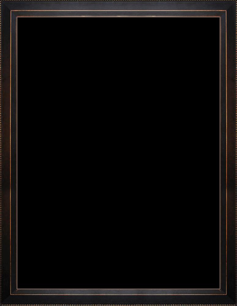 "Veine D'Or Bronze Angled Frame 30""X40"""