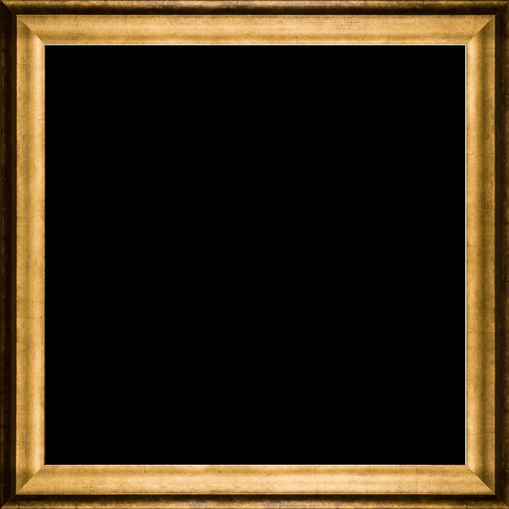 "Athenian Gold Frame 24""X24"""