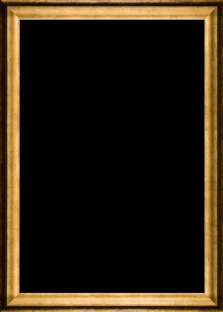 "Athenian Gold Frame 24""X36"""