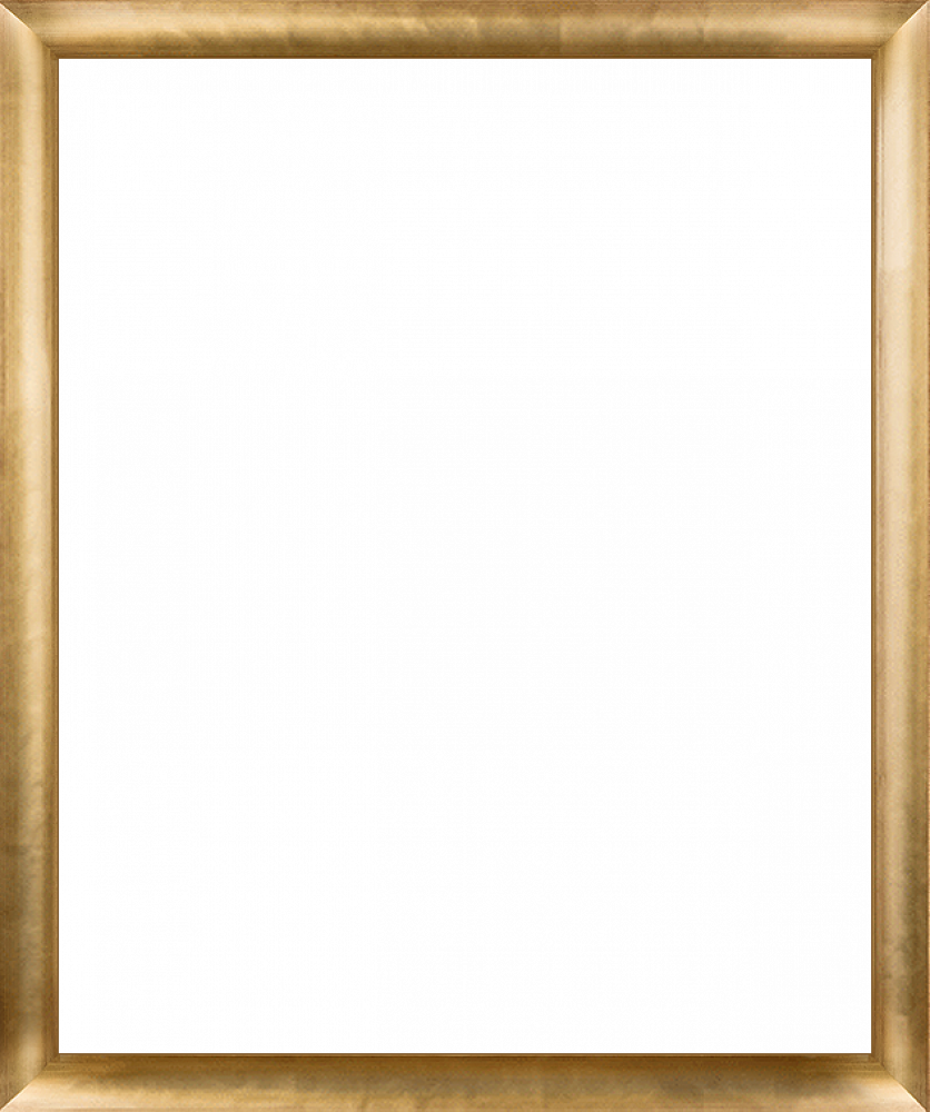 "Gold Luminoso Frame 20""X24"""