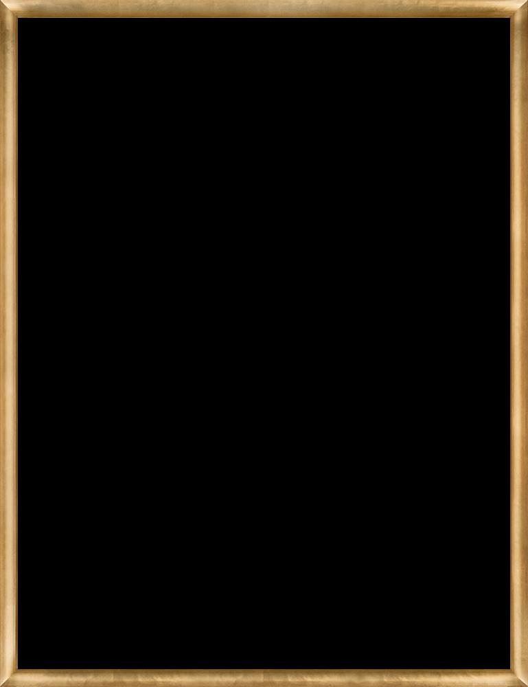Gold Luminoso Frame 36