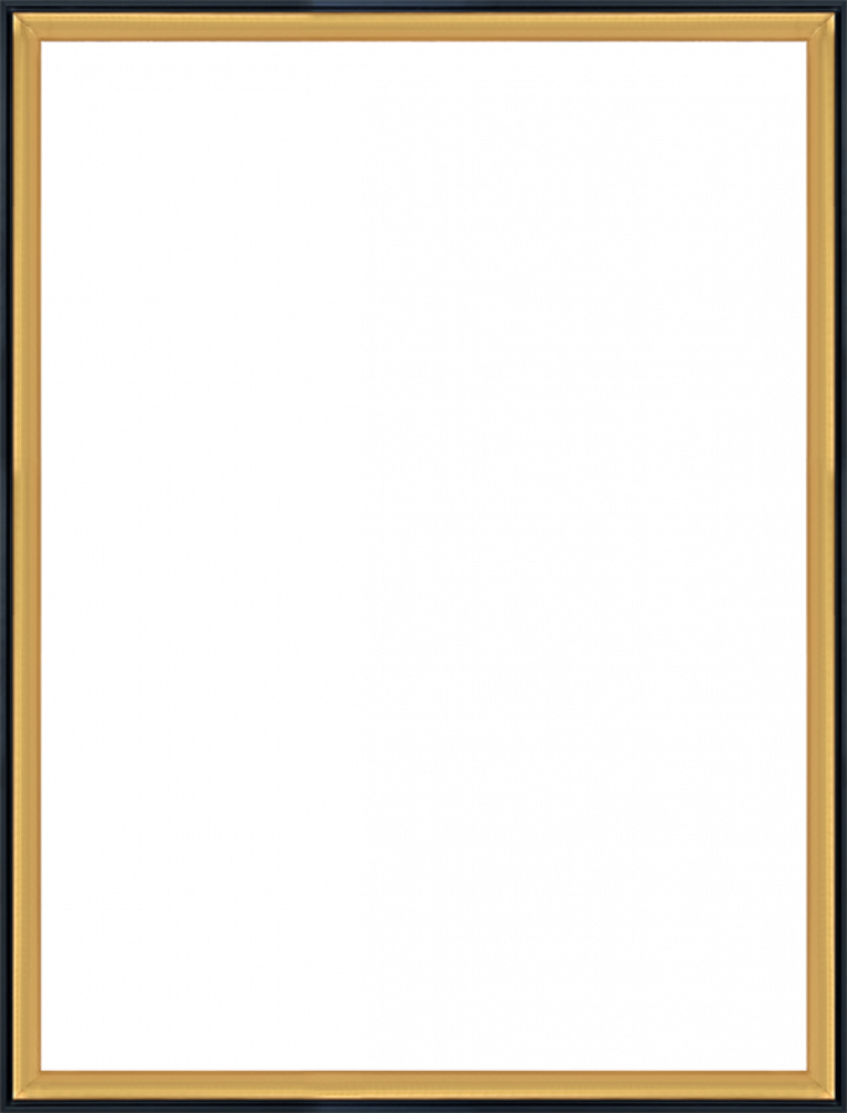 Burnished Gold and Black Wrap Custom Stacked Frame 30