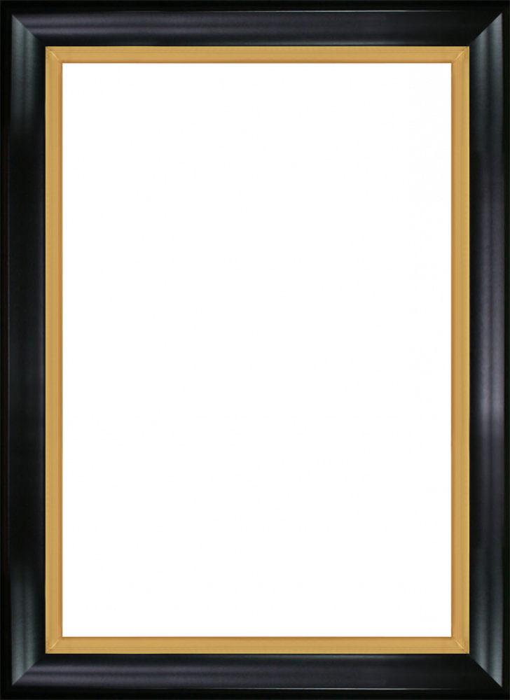 """Black Satin King and Burnished Gold Combo 24"""" X 36"""""""