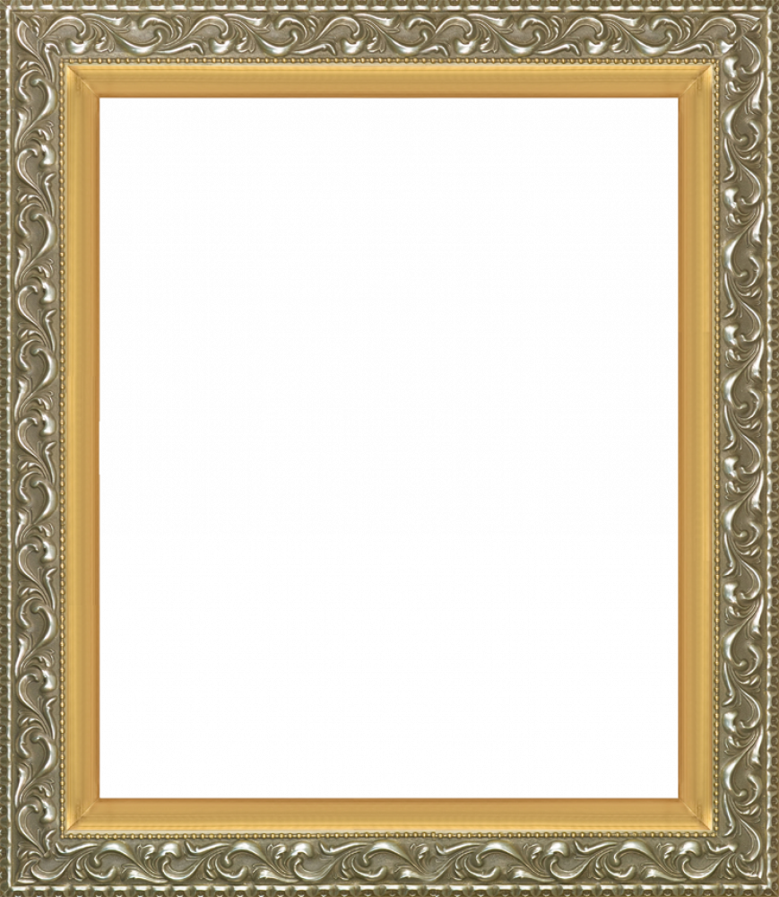 Rococo Silver and Burnished Gold Custom Stacked Frame 20