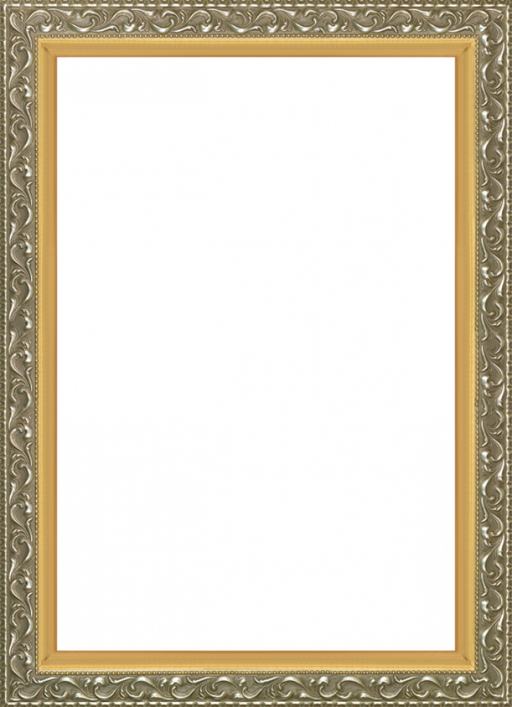 Rococo Silver and Burnished Gold Custom Stacked Frame 24