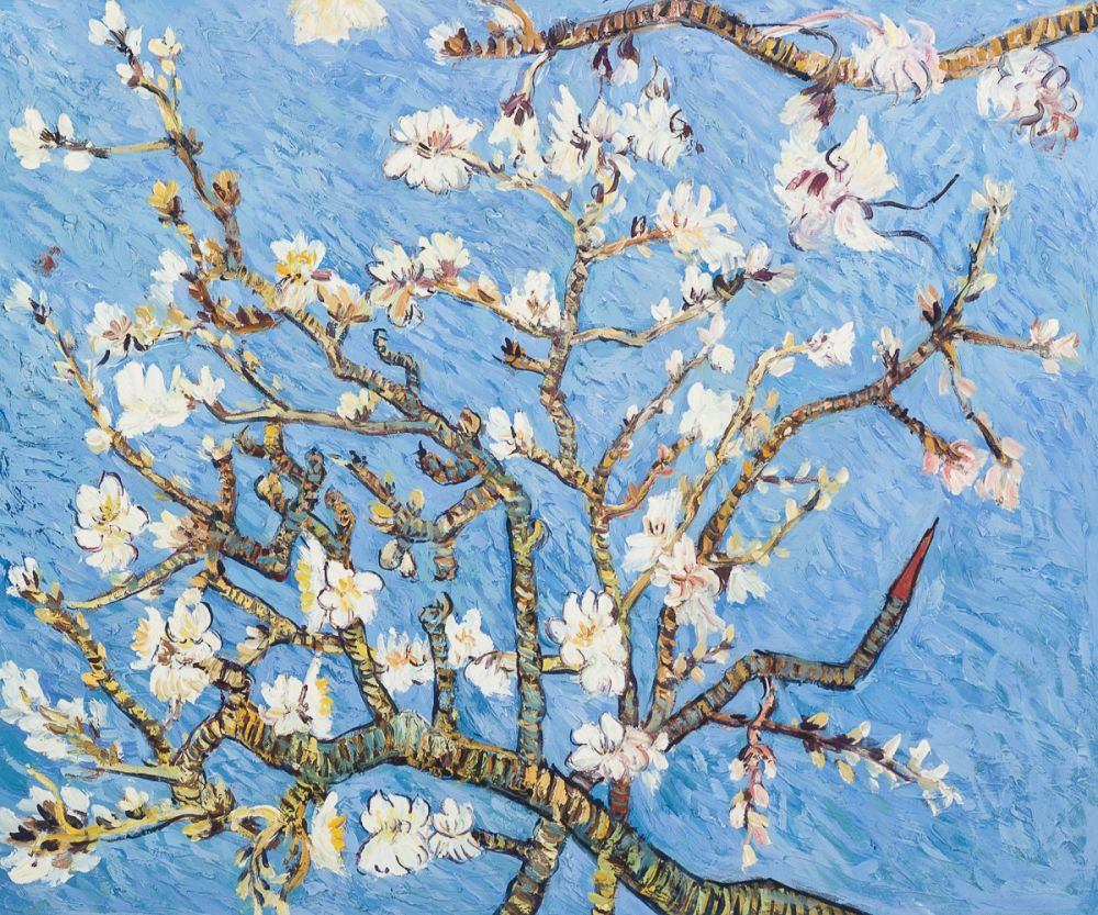 Branches of an Almond Tree in Blossom (Affordable Line)