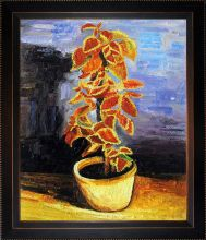Coleus Plant in a Flowerpot Pre-Framed