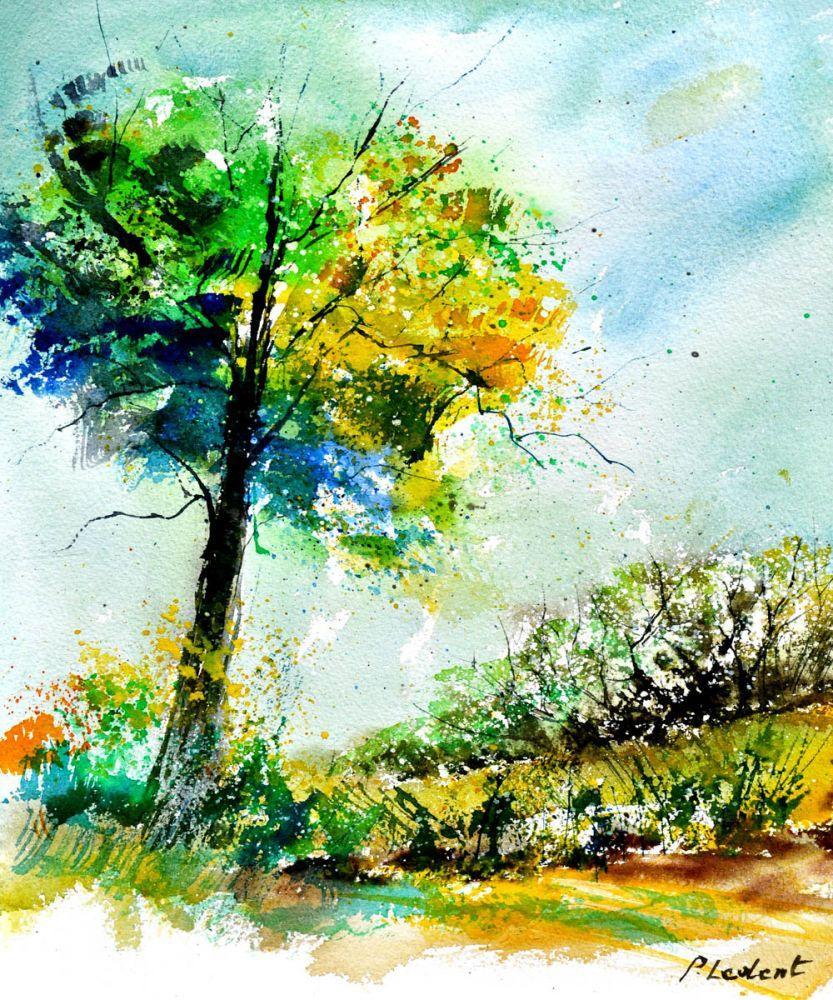 Watercolor 114062