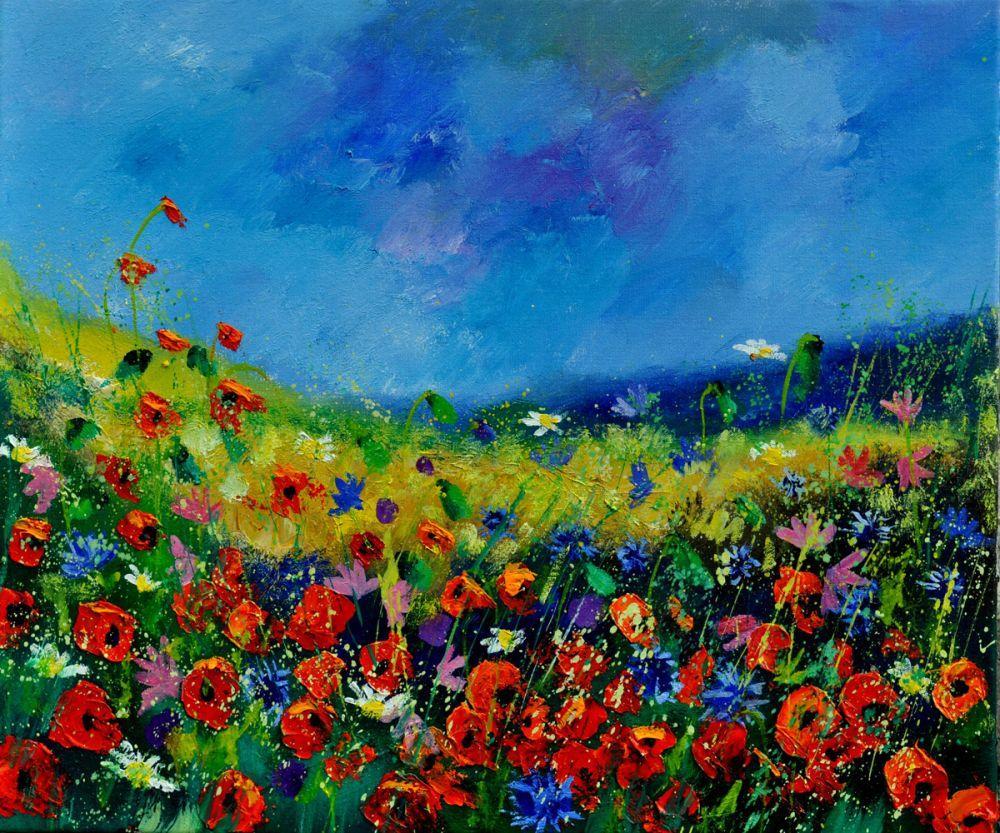 Field flowers 561190