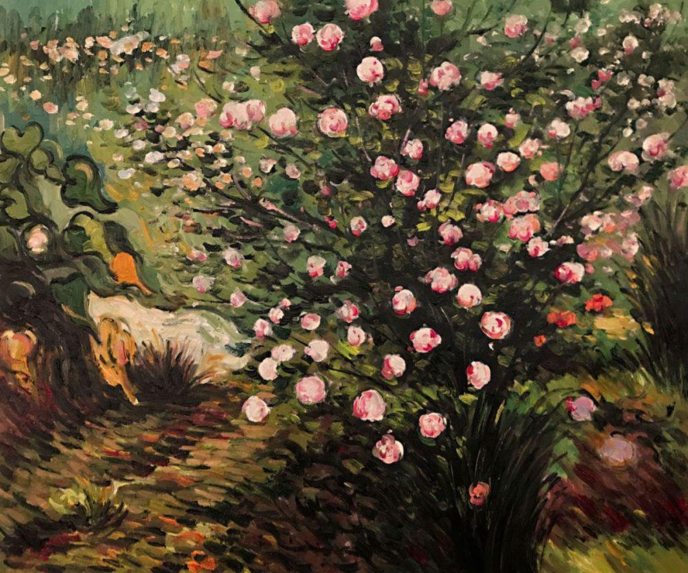 Rosebush in Blossom