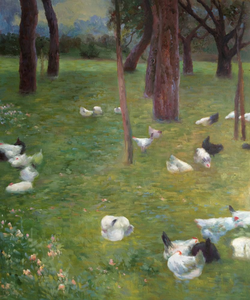 After the rain, Garden with Chickens in St. Agatha