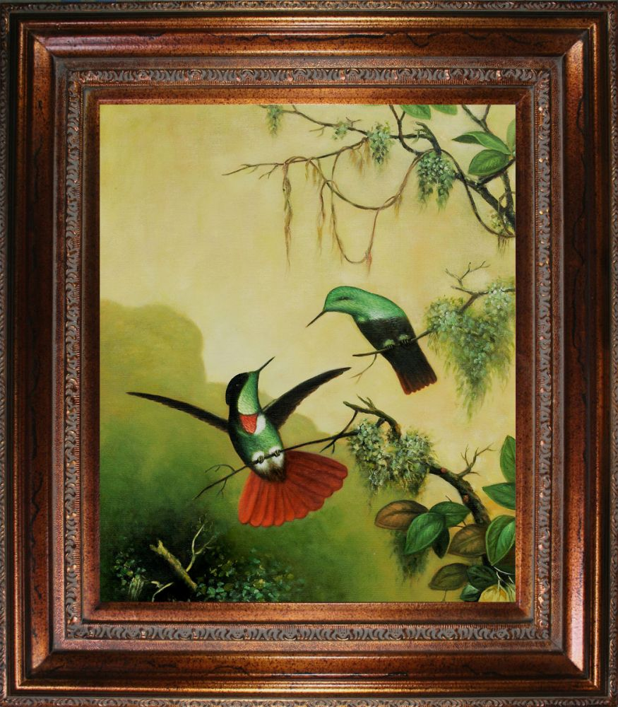 Two Hooded Visorbearer Hummingbirds Pre-Framed
