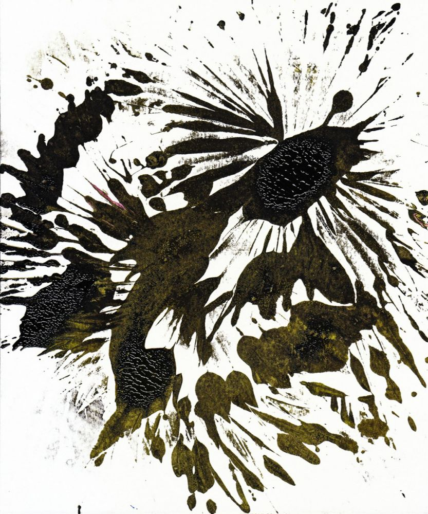 Imprints Of Nature Series 1751MP4