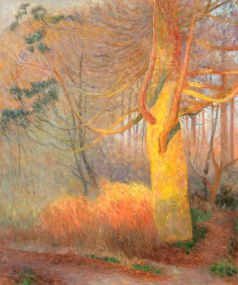 Tree in The Sun, 1900