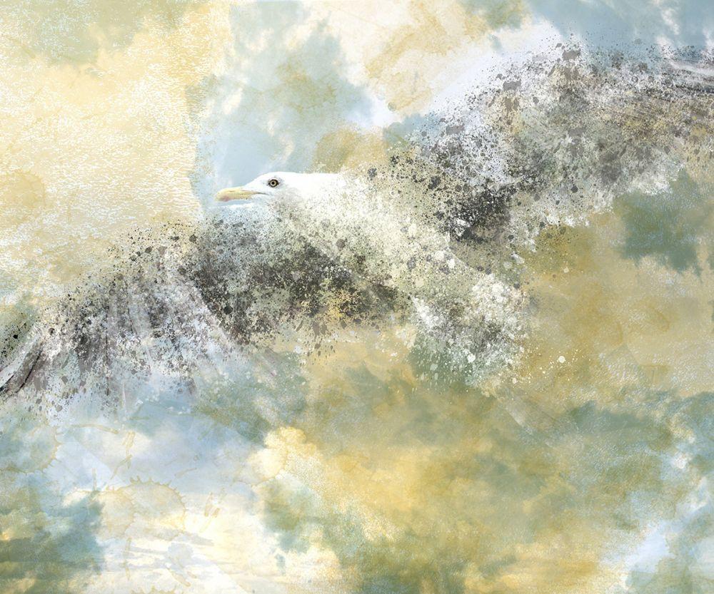 Digital Art, Vanishing Seagull