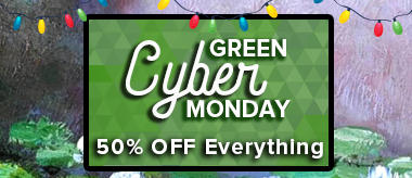 Green Cyber Monday Starts Now: 50% OFF EVERYTHING!