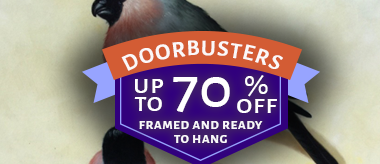 Up to 70% Off Framed Art Doorbusters!