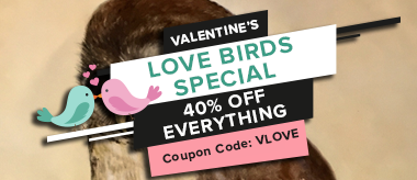 Valentine's Day Love Birds Special: Save 40% Off Art & Frames!