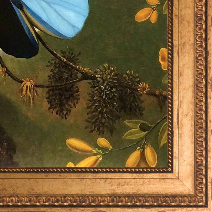 Blue Morpho Butterfly Pre-Framed