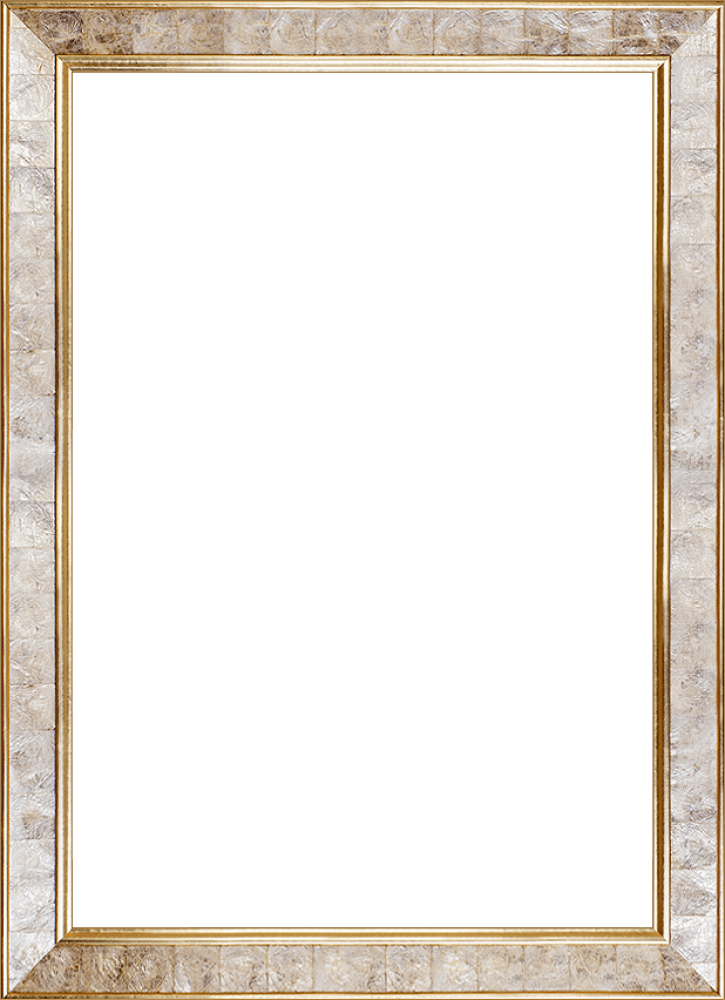 Gold Pearl Frame 24