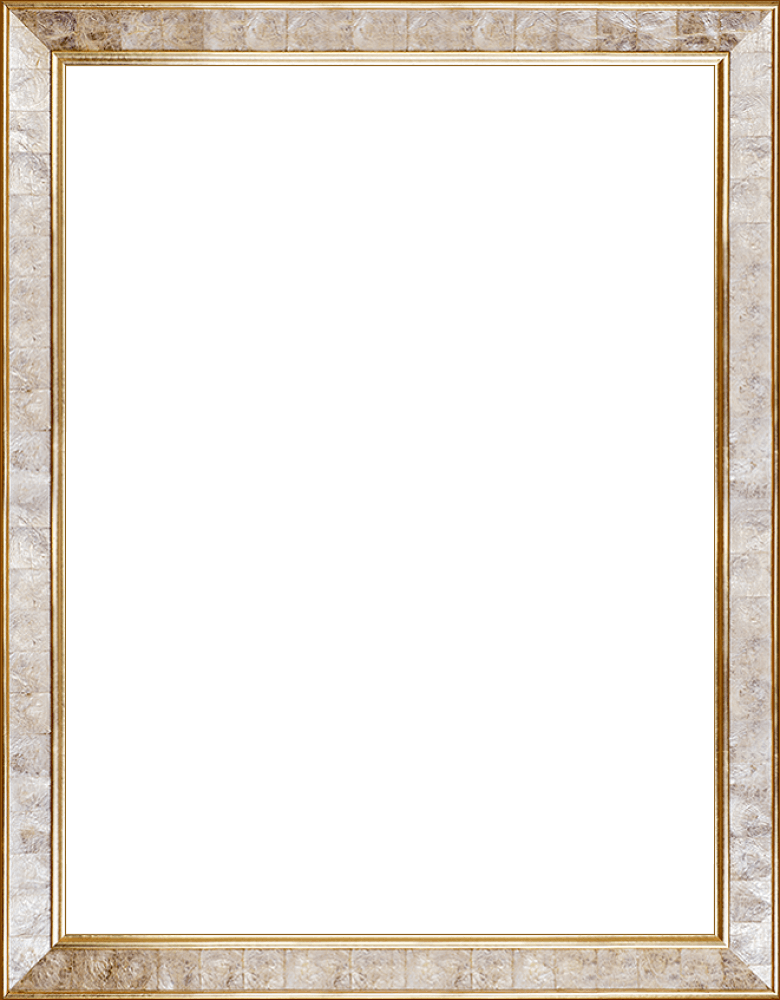 "Gold Pearl Frame 30"" X 40"""
