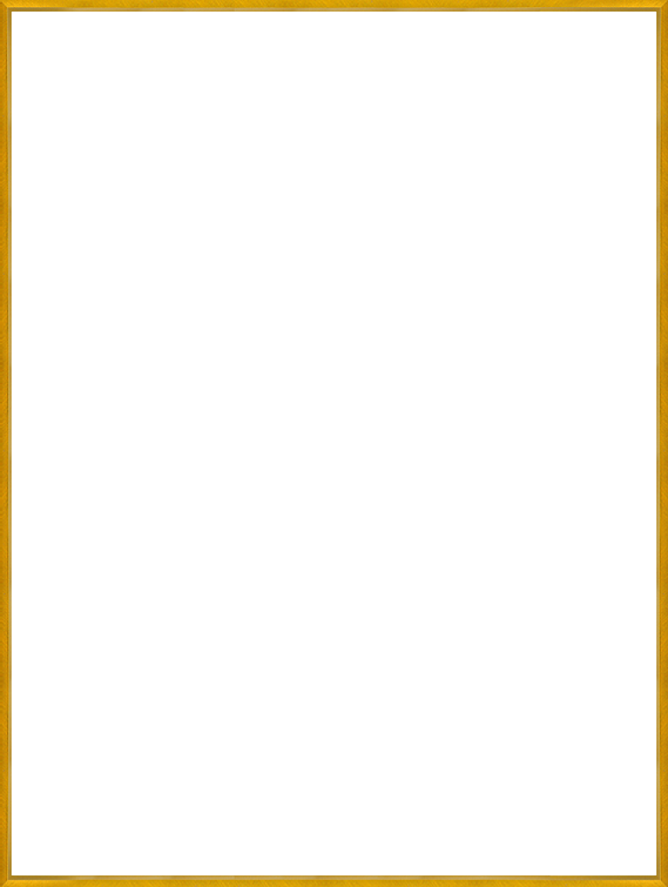 Studio Gold Bullion Frame 30