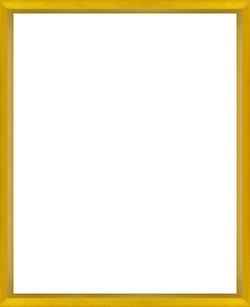 Studio Gold-Bullion Frame 8