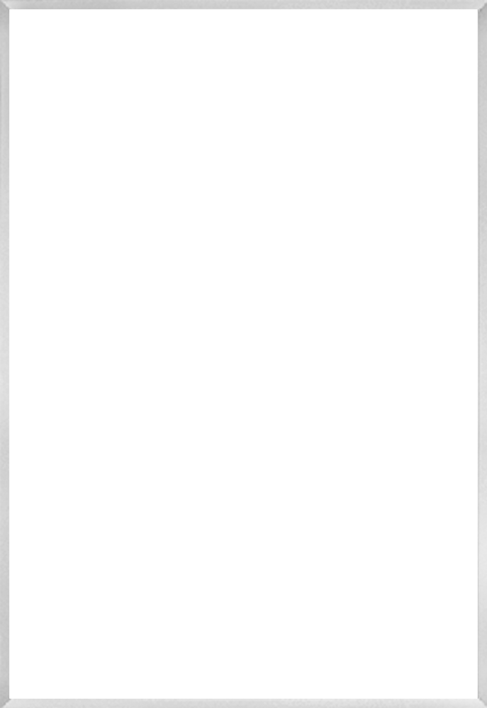 Studio Brushed Silver Frame 24