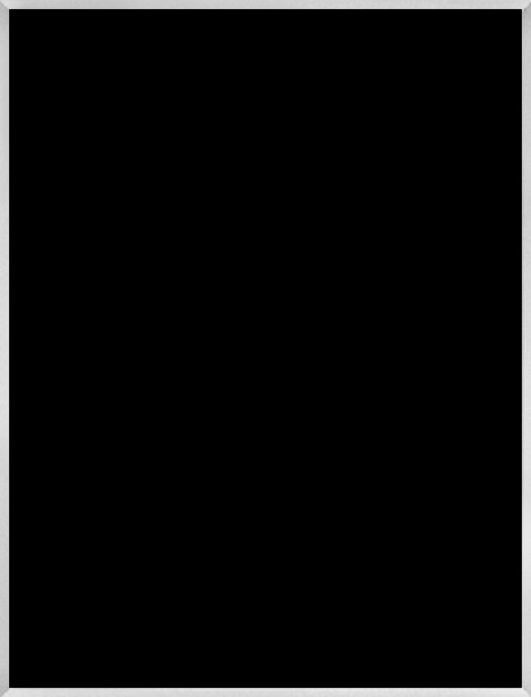 "Studio Brushed Silver Frame 36""X48"""
