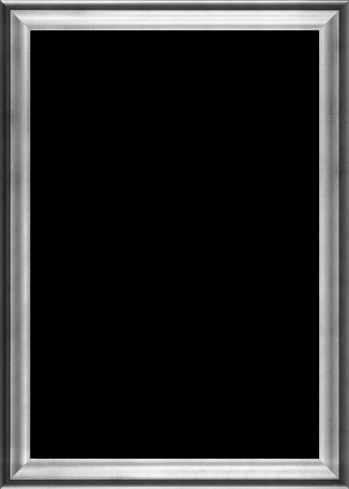 """Athenian Silver Frame 24""""X36"""""""