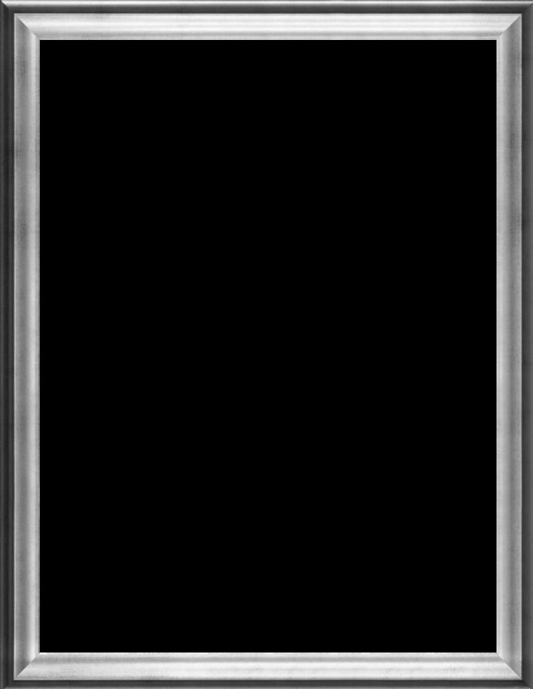 """Athenian Silver Frame 30""""X40"""""""