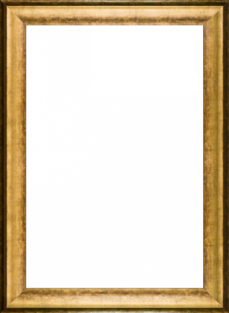 "Athenian Gold King Frame 24""X36"""