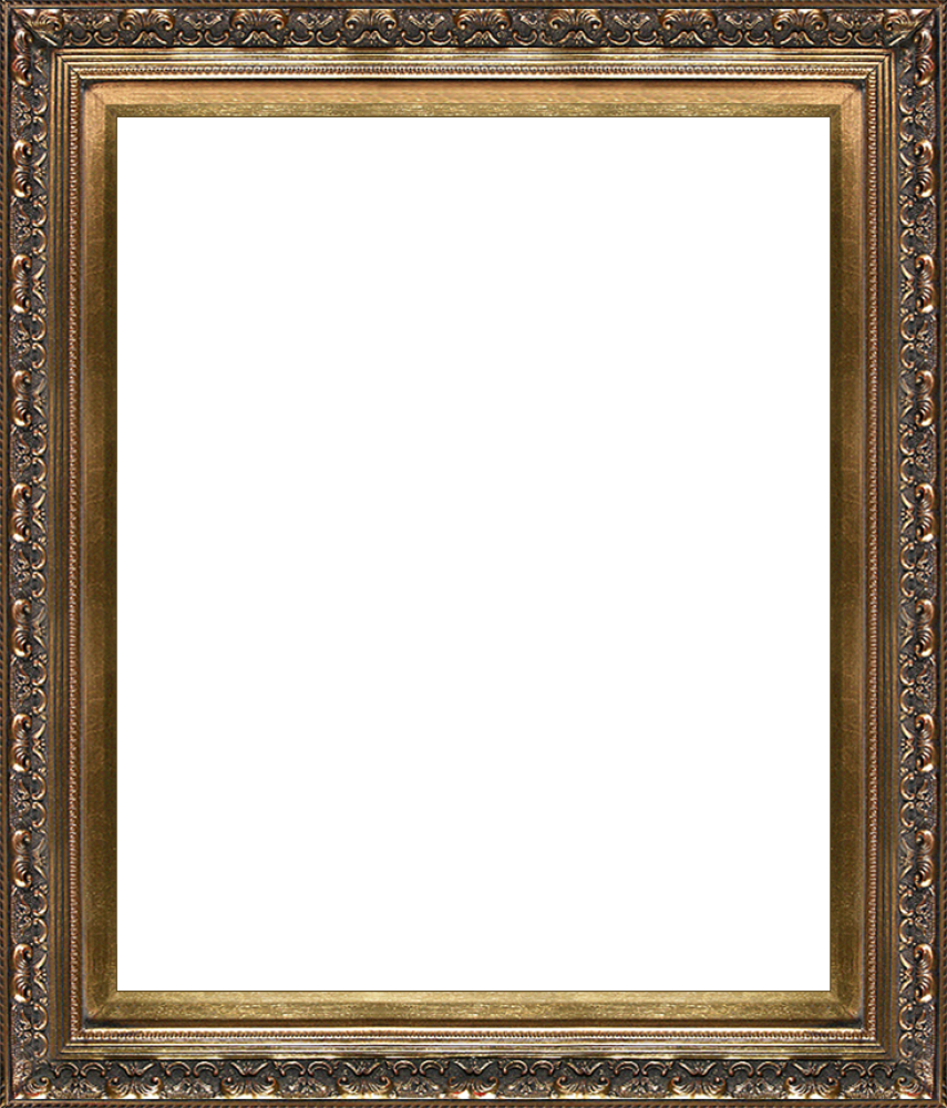 "Baroque Antique Gold Frame 20""X24"""