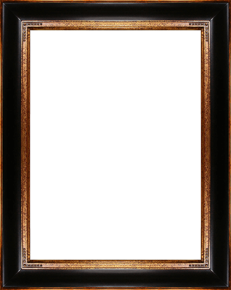 "Opulent Frame 30""X40"""