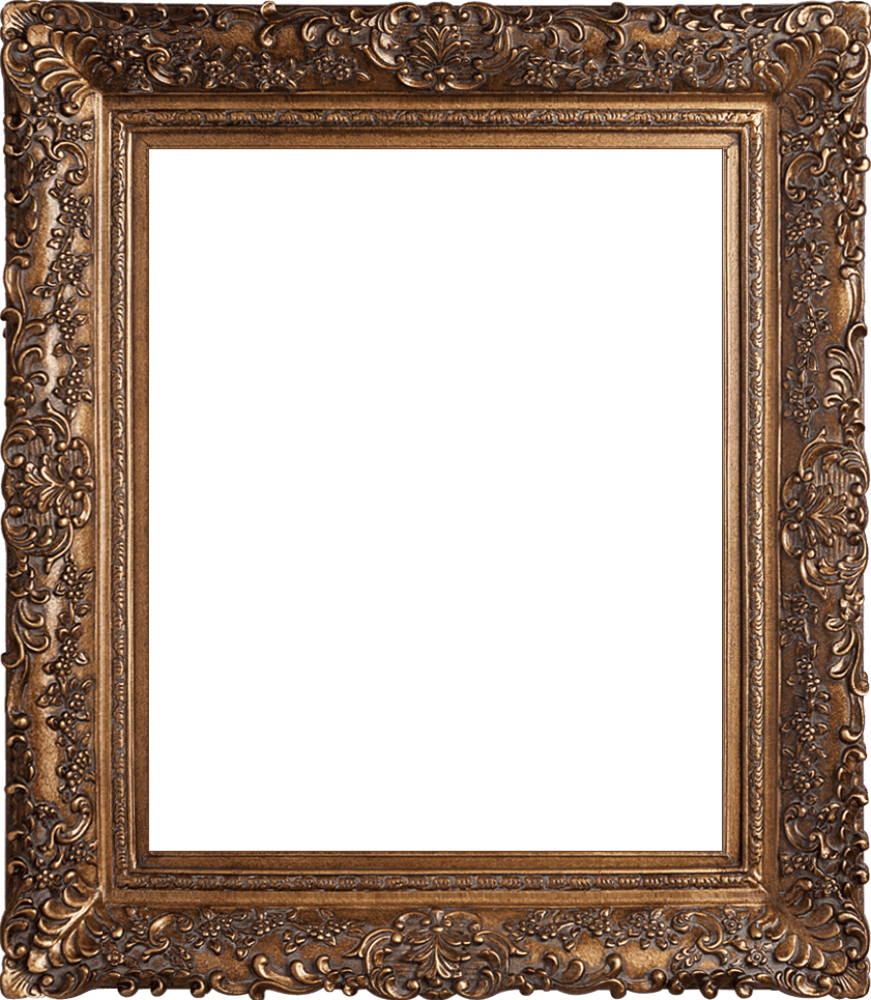 "Burgeon Gold Frame 20""X24"""