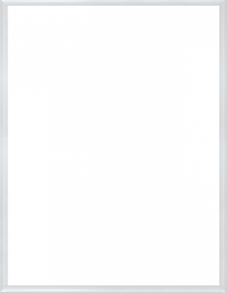 "Moderne Blanc Frame 36"" X 48"""