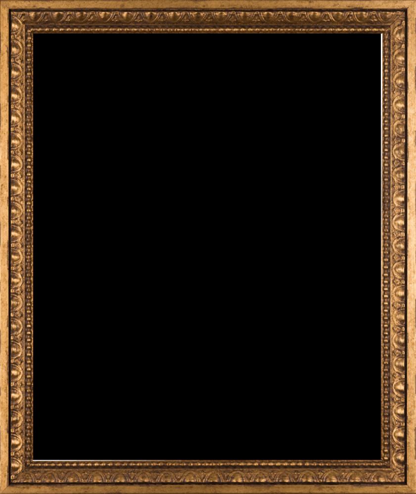 Versailles Gold Frame 20