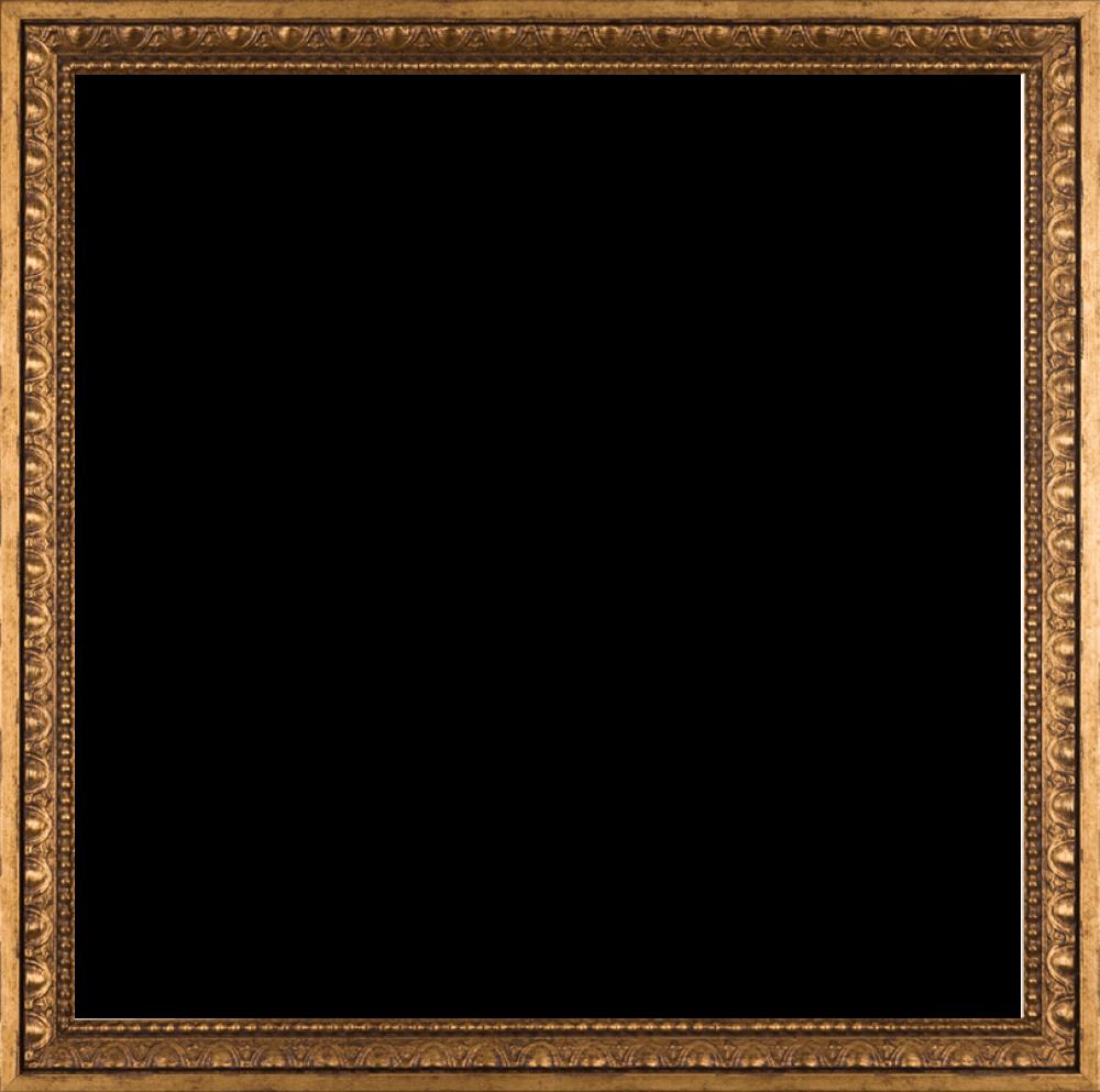 Versailles Gold Frame 24