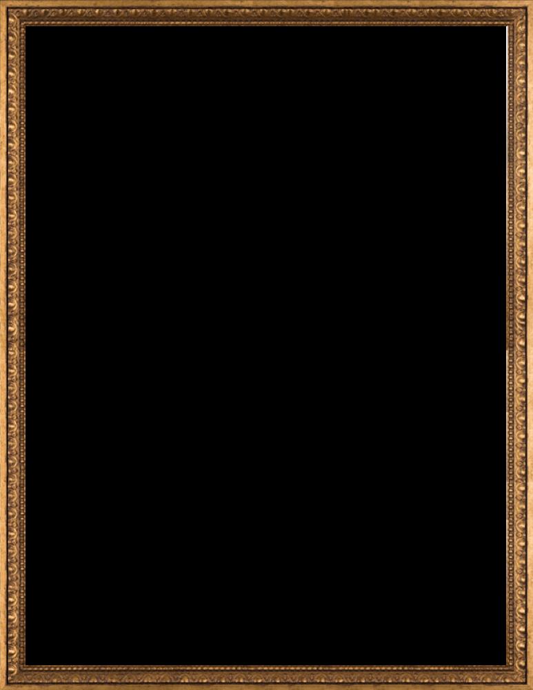 Versailles Gold Frame 36