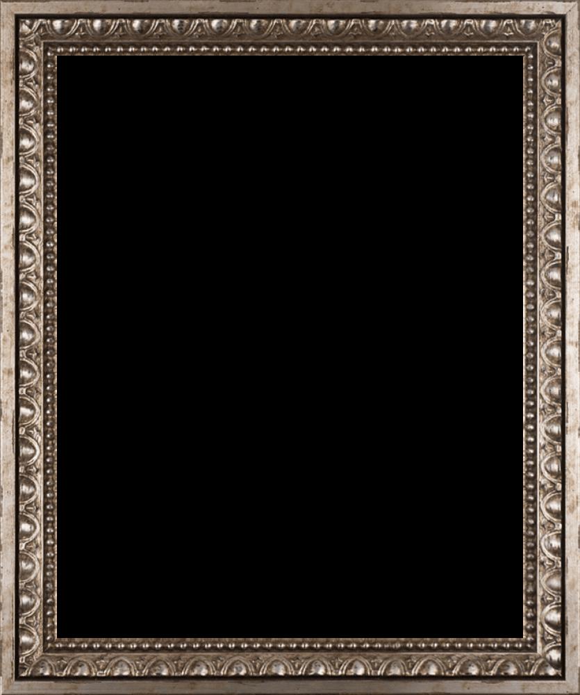 "Versailles Silver Frame 16"" X 20"""