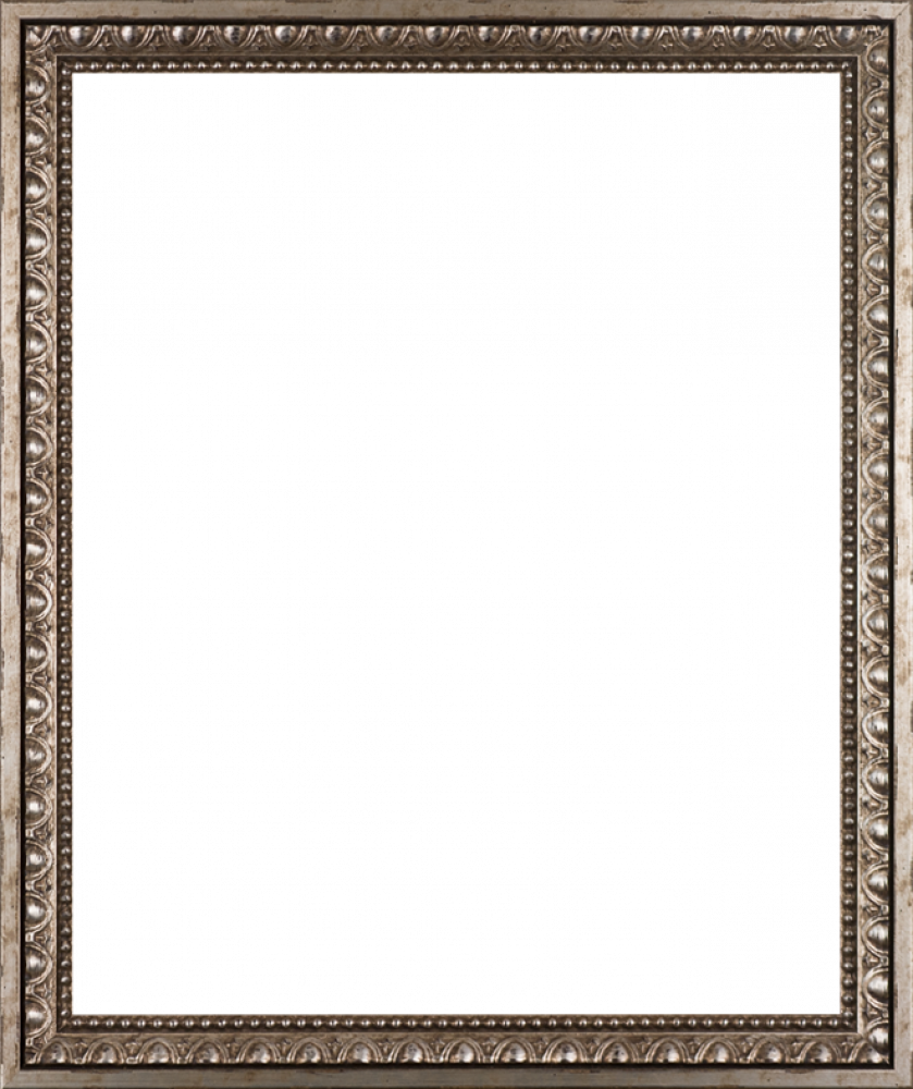 "Versailles Silver Frame 20"" X 24"""