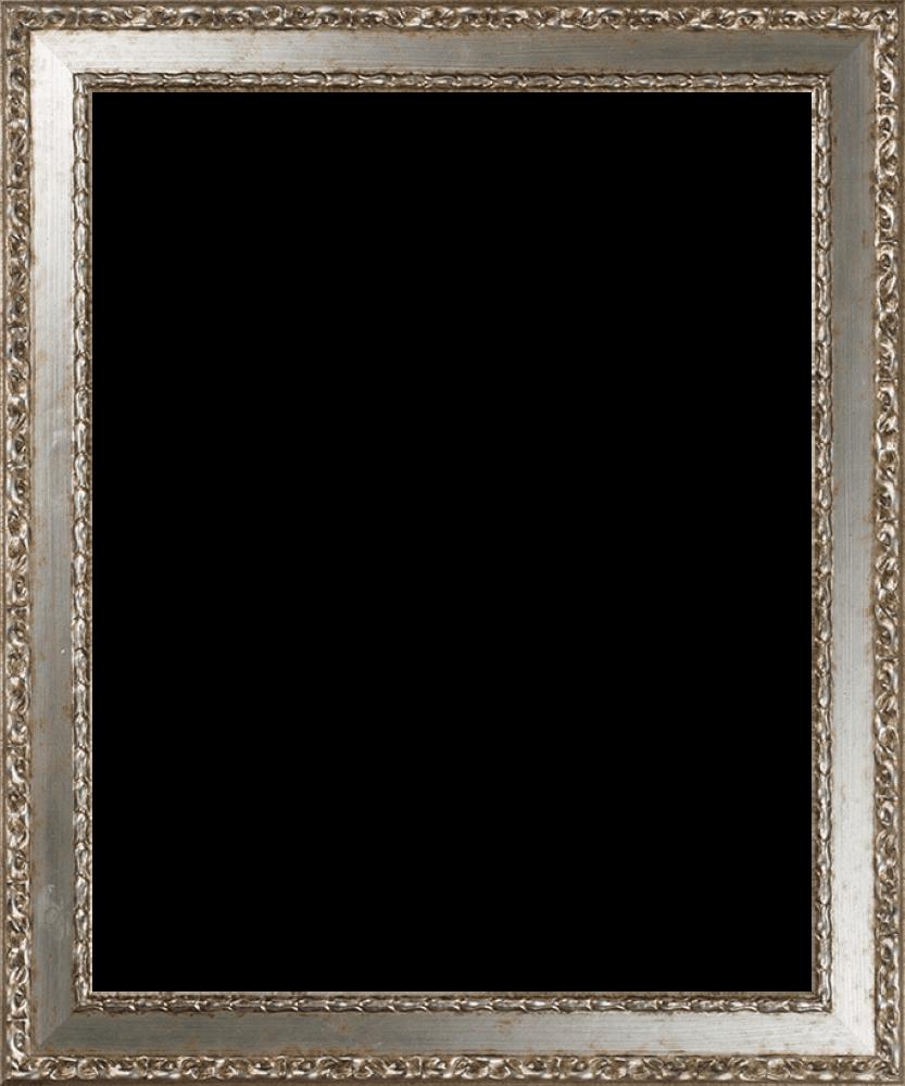 Versailles Silver Salon Frame 16