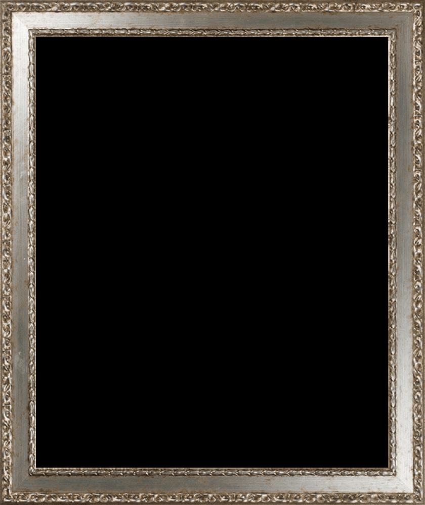 Versailles Silver Salon Frame 20