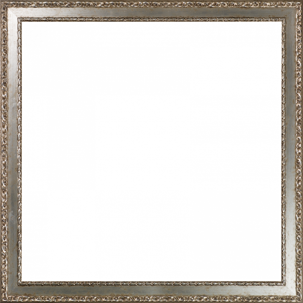 Versailles Silver Salon Frame 24