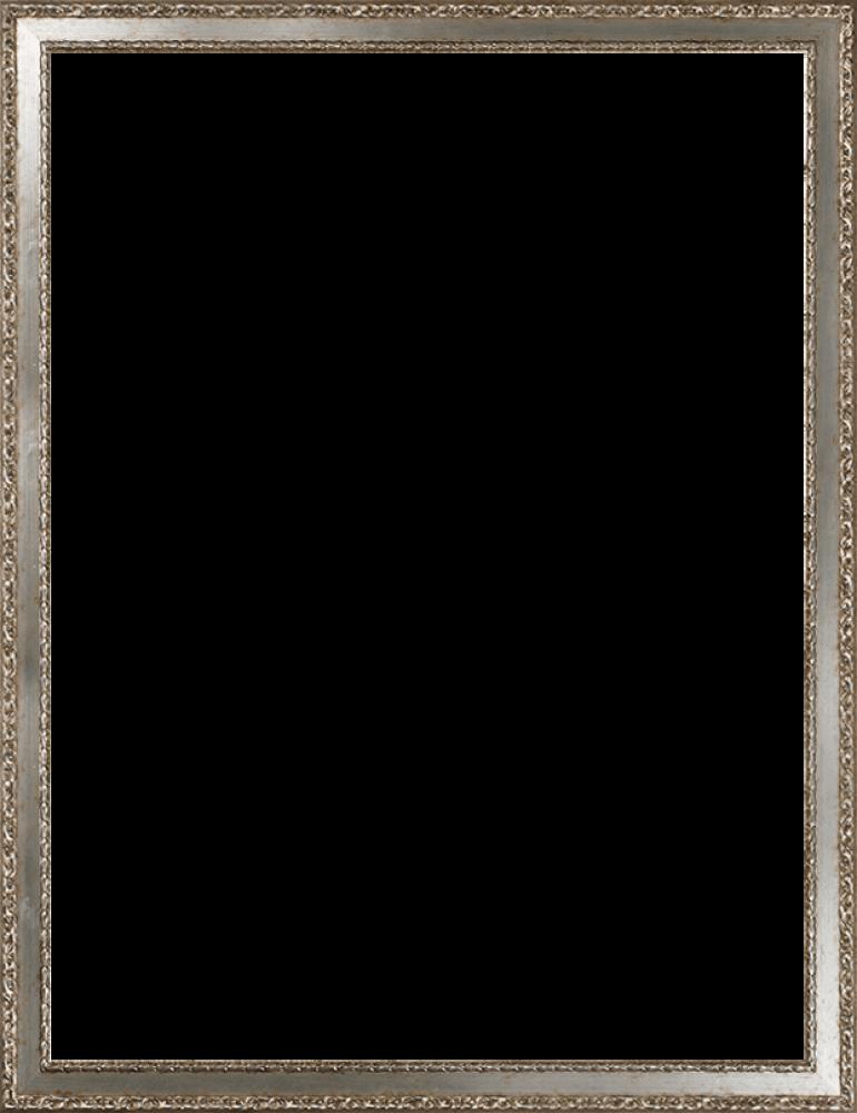 Versailles Silver Salon Frame 30