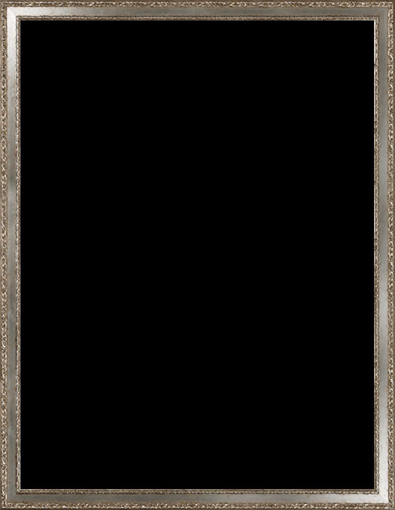 Versailles Silver Salon Frame 36