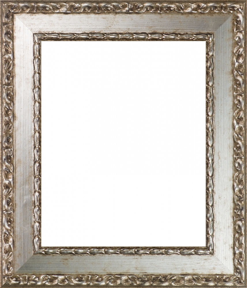 Versailles Silver Salon Frame 8