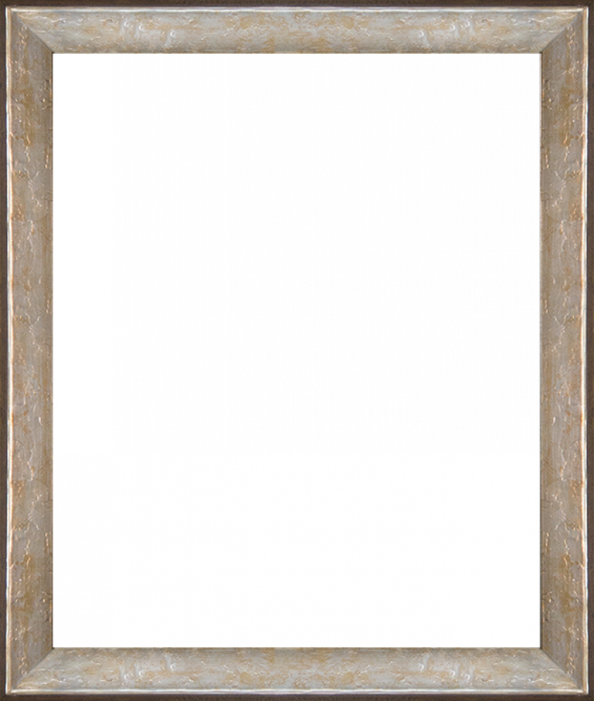 """Silver Luna Frame 20""""X24"""""""