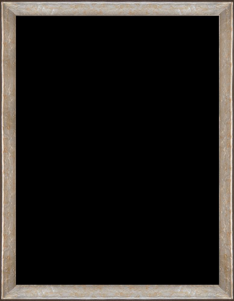 """Silver Luna Frame 36""""X48"""""""