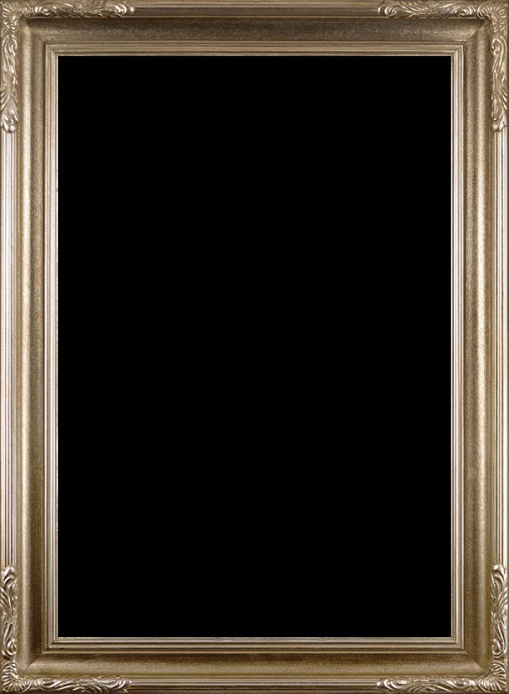 Florentine Dark Champagne Frame 24